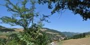 Uitzicht Monte Busca