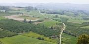 Tutto-Langhe Piemonte