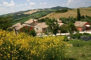 Il Borgo Ca'Palazzo